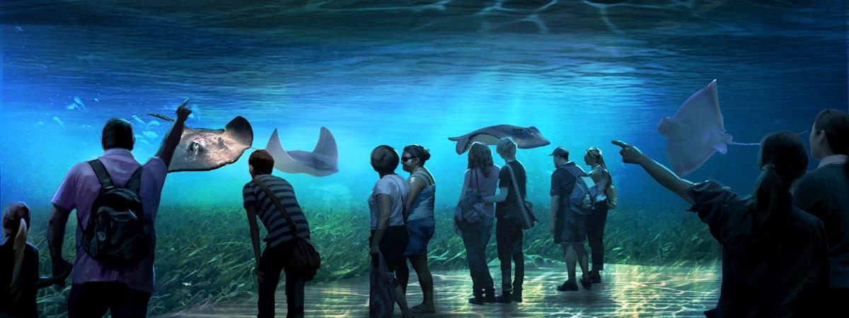 national-geographic-encounter-ocean-odyssey-new-york-attraction